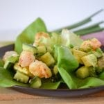 Shrimp Lettuce Wraps with Avocado and Cucumber
